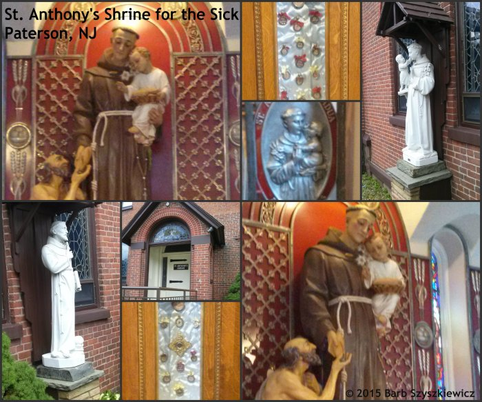 St Anthony Collage