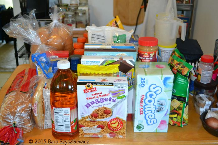 Vacation food packing 2015 1c