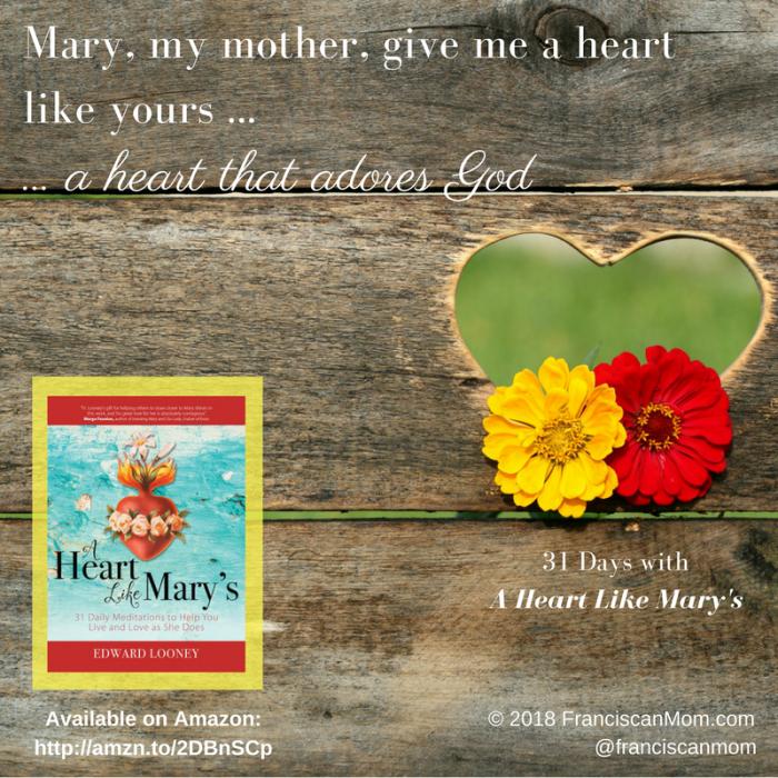 """""""31 Days with A Heart Like Mary's"""" by Barb Szyszkiewicz (FranciscanMom.com)"""